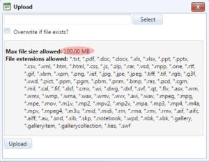 max-file-size